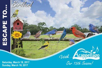 Escape to...Birdland
