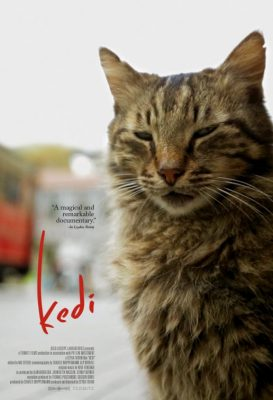 After Hours Film Society Presents Kedi
