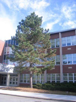 Addison Trail High School