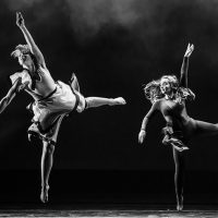 College Dance: Spring Showcase