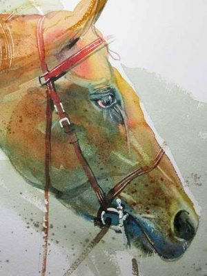 "Dan Danielson – A ""BOLD"" approach to Watercolor"