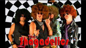 Bensenville Music in the Park: The Shagadelics