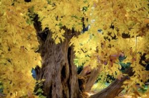 Fall Photography Show at the Sterling Morton Libra...
