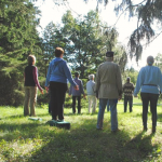 Forest Therapy: Art in the Forest 9/16