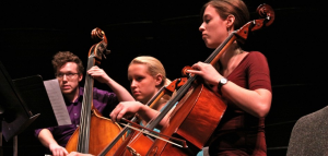 College of DuPage Chamber Orchestra Concert