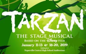 Tarzan The Stage Musical