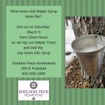 Maple Sugaring at the Peck Homestead
