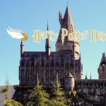 Harry Potter Day at Lisle Library