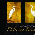 Delicate Beauty by Joanne Barsanti