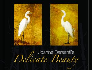 Artist Reception: Delicate Beauty by Joanne Barsan...