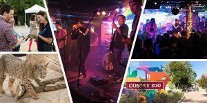 Common Area Maintenance: Cosley Zoo Benefit Concert