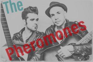 Block to Block Party: The Pheromones