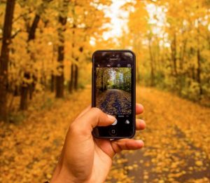 Fall Photography Walking Tour