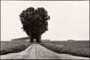 Nature Photography: In the Footsteps of Henri Cart...