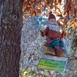 Gnome Hunt