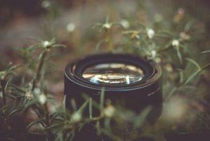 Basic Nature Photography