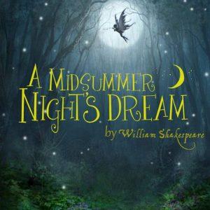 Auditions: A Midsummer Nights Dream