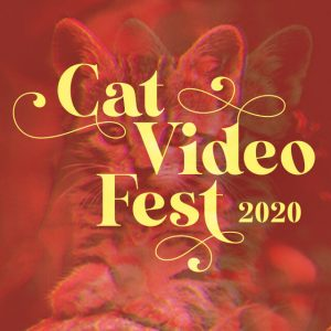 After Hours Film Society Presents CatVideoFest
