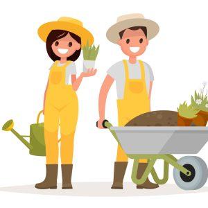 Gardener's Corner (In Person)