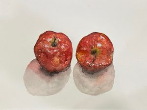 Watercolor Apples- free art workshop!